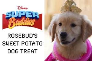 Rosebud's Sweet Potato Dog Treats