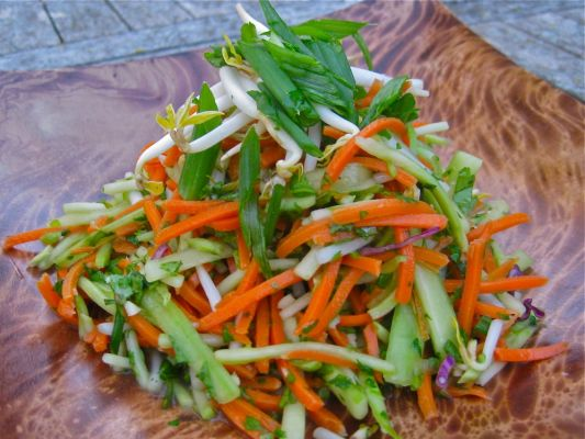 Vegan Carrot Broccoli and Bean Shoot Salad
